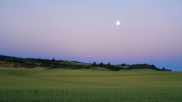 Increíble paisaje crepuscular de verano del valle verde