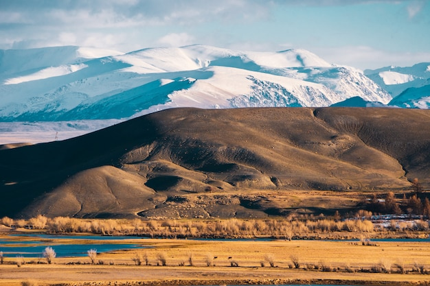 Increíble paisaje de la zona de la estepa con lagos y árboles que se convierten sin problemas en montañas