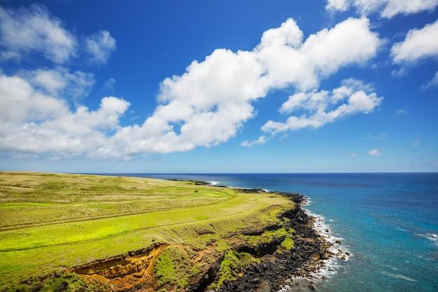 Increíble playa hawaiana