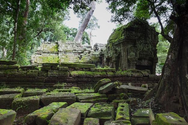 Increíble templo antiguo castillo de bayon