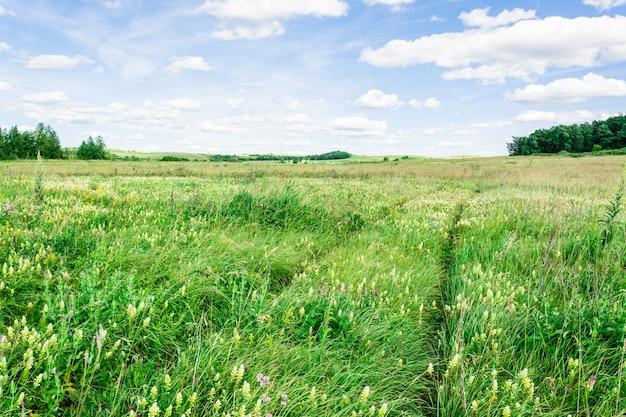 Un indicador de luz cruza un prado de verano en un día soleado y un cielo azul claro con nubes. viaje local