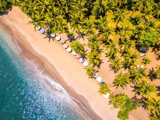 Indonesia. playa de arena tropical y muchas palmeras. agua color esmeralda y sombrillas. vista aérea verticalmente hacia abajo