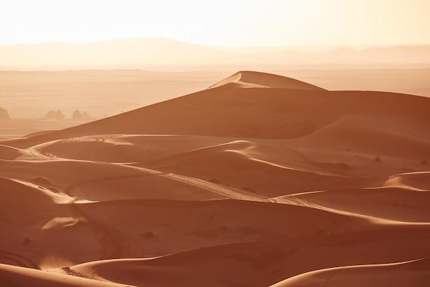 Infinitas arenas del desierto del sahara. hermoso atardecer sobre las dunas de arena del desierto del sahara, marruecos, áfrica