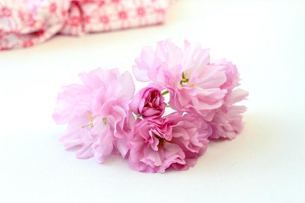 Inflorescencia de sakura