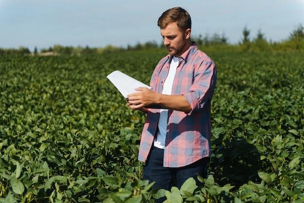 Ingeniero agrónomo inspeccionando cultivos de soja que crecen en el campo agrícola. concepto de producción agrícola. joven agrónomo examina la cosecha de soja en el campo en verano. granjero en campo de soja