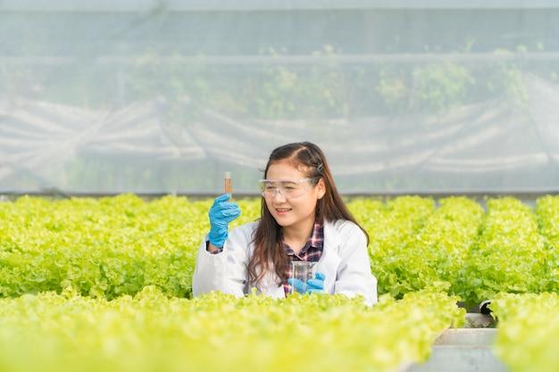 Ingeniero agrónomo que verifica la acidez y la alcalinidad del agua en una granja hidropónica de invernadero y mide el crecimiento de vegetales orgánicos antes de la cosecha al mercado. concepto de tecnología agrícola