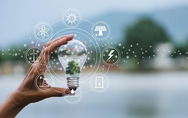 Innovación y concepto de energía del asimiento de la mano una bombilla.