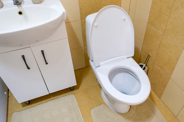 Inodoro y lavabo en un baño compacto.