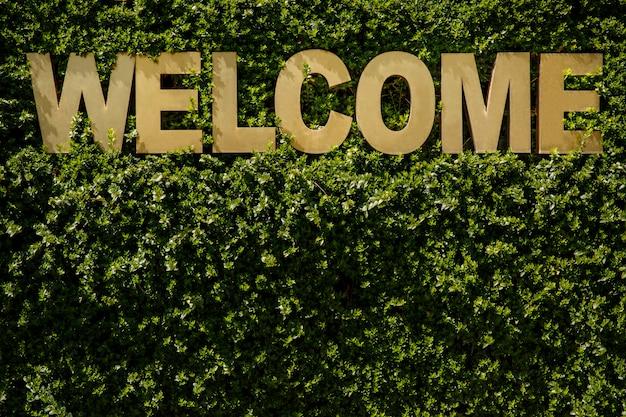 Inscripción de bienvenida sobre un fondo verde natural