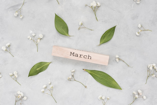 Inscripción de marzo con hojas y ramas de flores.