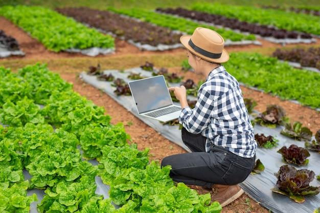 Inspección de calidad de huerta por agricultores.