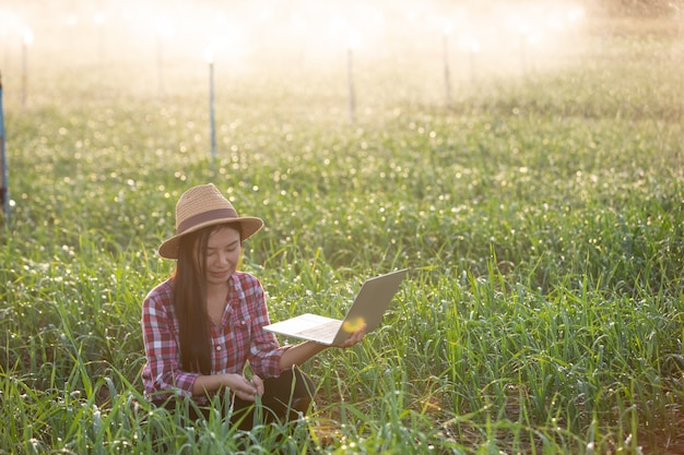 Inspección de calidad de jardines aromáticos por agricultores.