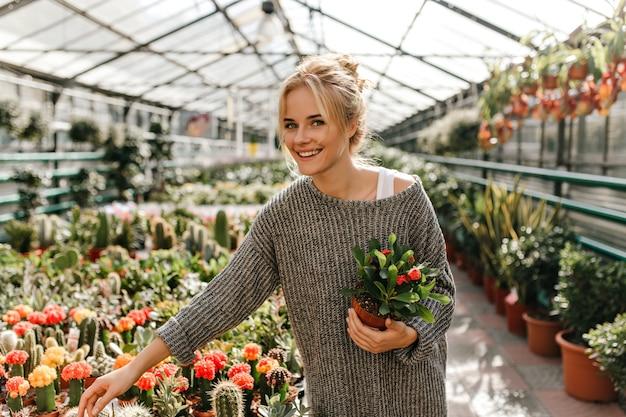 Instantánea de mujer alegre en vestido tejido de gran tamaño eligiendo cactus en tienda de plantas.