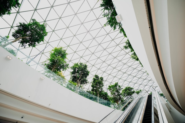 Interior de un aeropuerto con ventanas