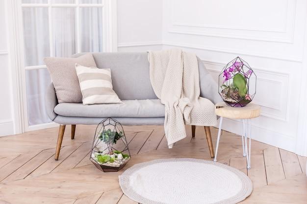 Interior con florarios, formas de vidrio para interior con plantas, piedras.