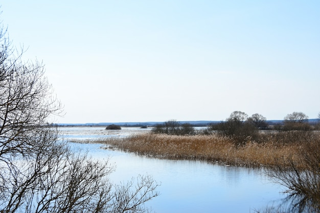Inundación de primavera del río en el campo