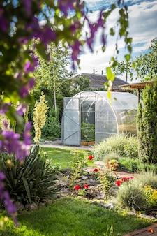 Invernadero en jardín trasero con puerta abierta