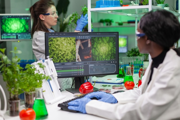 Investigador biólogo escribiendo experiencia en omg en la computadora para el experimento de microbiología científica