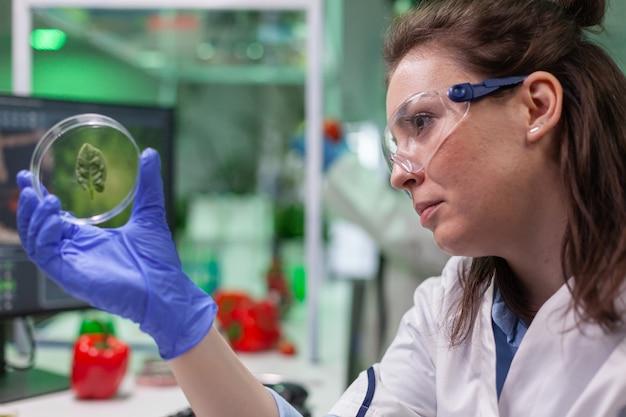 Investigador botánico sosteniendo placa de petri con muestra de hoja verde