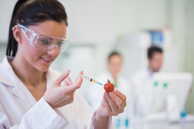 Investigador científico inyectando tomate en laboratorio