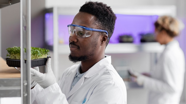 Investigador masculino en el laboratorio con gafas de seguridad y planta
