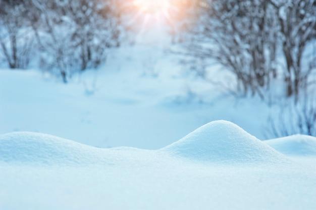 Invierno con nieve y sol