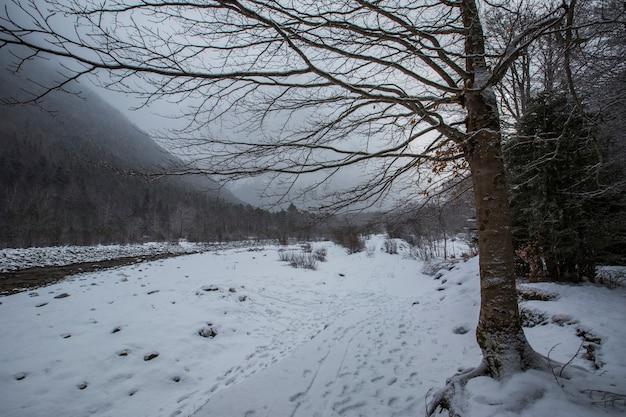 Invierno en el parque nacional de ordesa y monte perdido pirineos españa