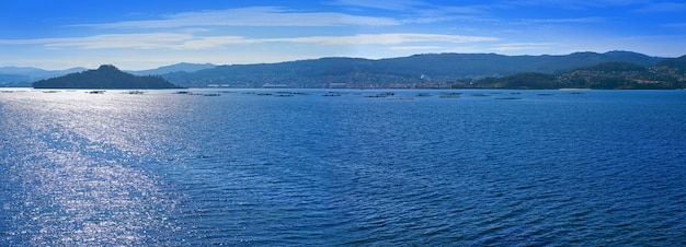 Isla de illa de tambo en ria de pontevedra galicia.