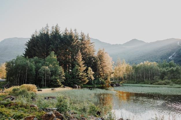 Isla en medio de un lago