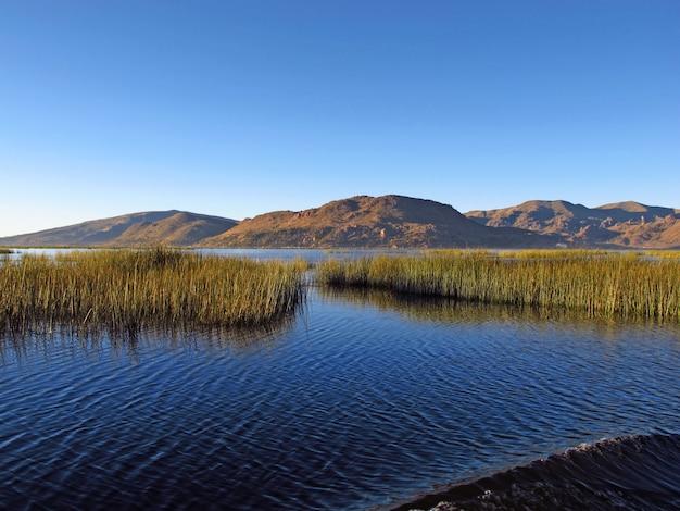 Islas flotantes de los uros en el lago titicaca en los andes, perú y bolivia