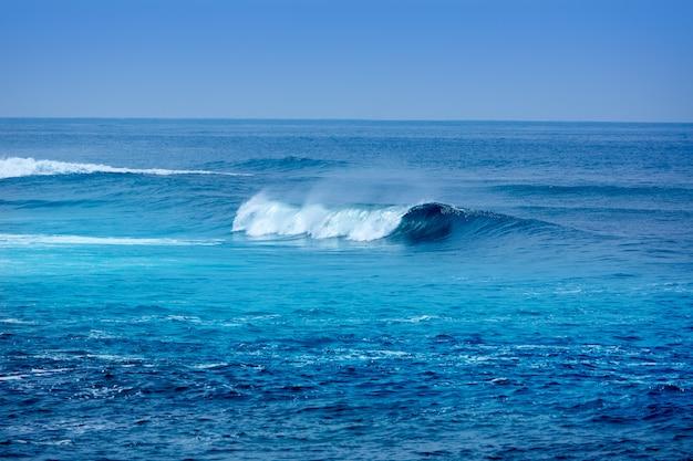 Jandia surfea las olas de la playa en fuerteventura