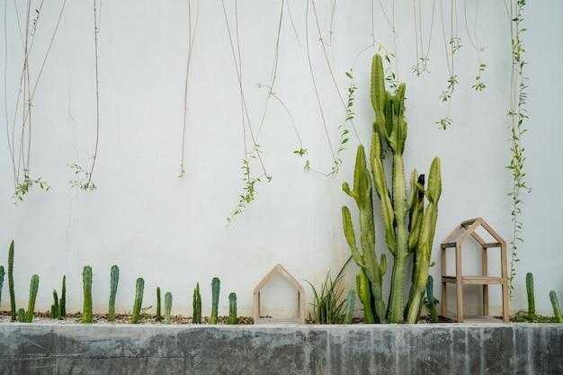 Jardín de cactus en la pared blanca.