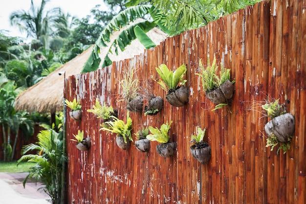 Jardín colgante vertical.