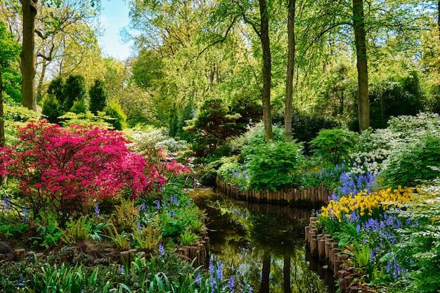 Jardín de flores keukenhof. lisse, los países bajos.