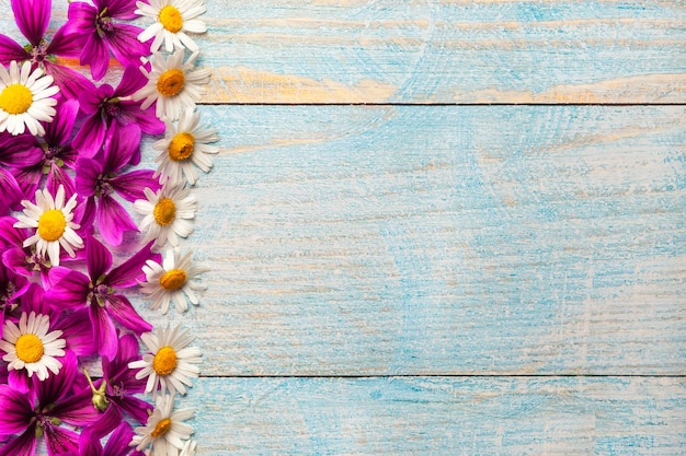 Jardín de flores púrpuras y blancas sobre fondo azul de mesa de madera vieja con espacio de copia,