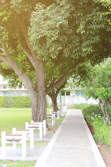 Jardín a pie en el parque público.