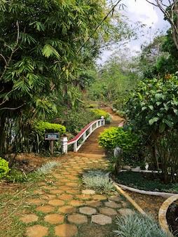 El jardín en el sur de laos