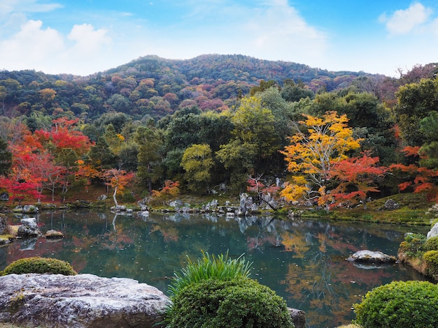 Jardín del templo de tenryuji en otoño en kyoto, japón.