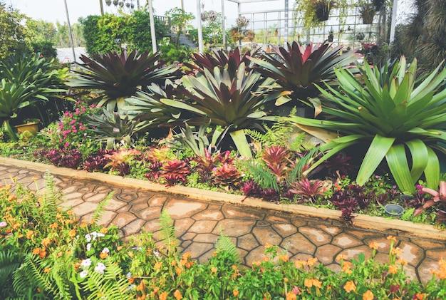 Jardinería doméstica y decoración de ambientes de invernadero en interiores jardines secretos y configuraciones modernas de jardinería