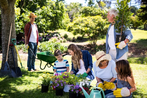Jardinería familiar multigeneración en el parque
