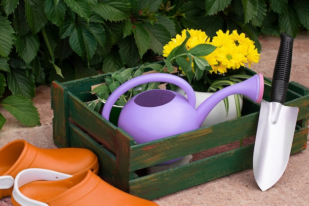 Jardinería. trabajar en el jardín. herramientas, regadera y flor en una maceta sobre un fondo de hojas verdes.
