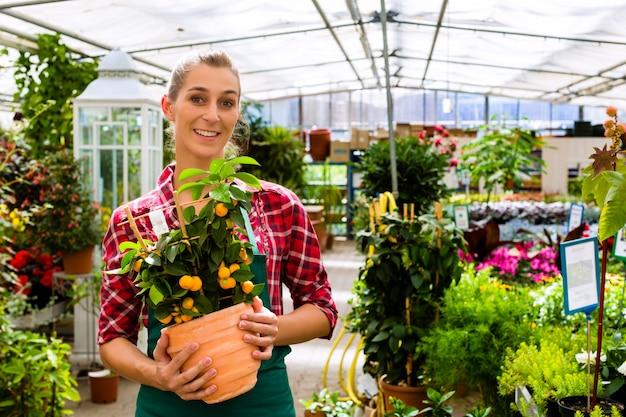 Jardinero en la florería de su casa verde.