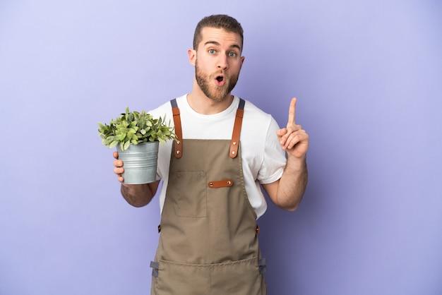 Jardinero hombre caucásico sosteniendo una planta aislada