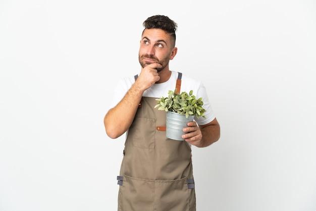 Jardinero hombre sosteniendo una planta sobre fondo blanco aislado y mirando hacia arriba