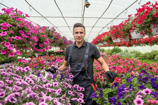 Jardinero hombre vistiendo uniforme trabajando con flores decorativas en una maceta en un invernadero de plantas industriales