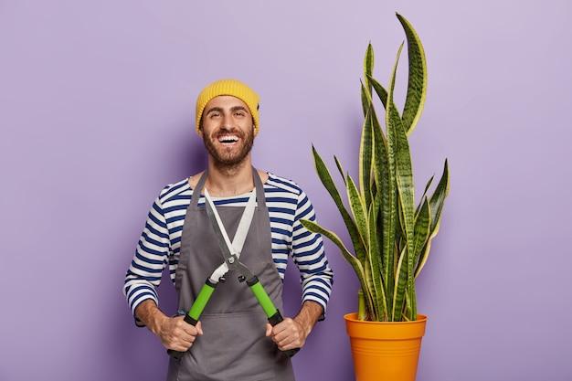 Jardinero masculino sonriente sostiene tijeras de podar, se preocupa por la planta de serpiente en maceta, usa sombrero y delantal, tiene expresión alegre, siendo florista profesional