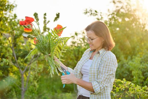 Jardinero de mujer cortando amapolas de flores rojas con tijeras de podar, día soleado en el jardín de primavera