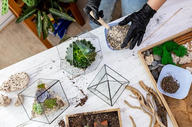 Jardinero de mujer vista superior manos en guantes de protección arreglo suculentas en florarios de vidrio