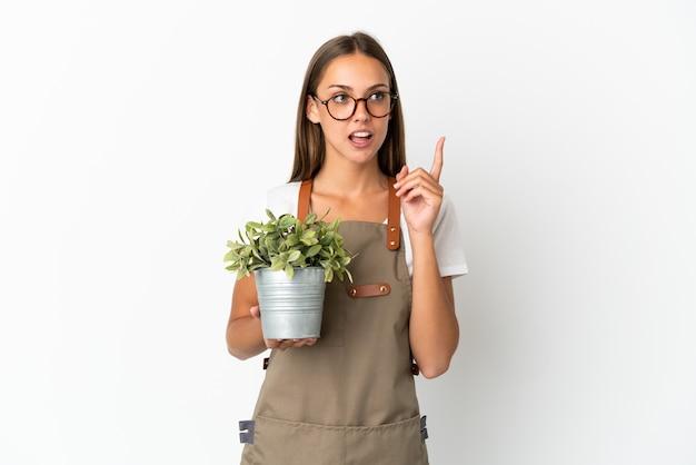 Jardinero niña sosteniendo una planta sobre fondo blanco aislado pensando en una idea apuntando con el dedo hacia arriba