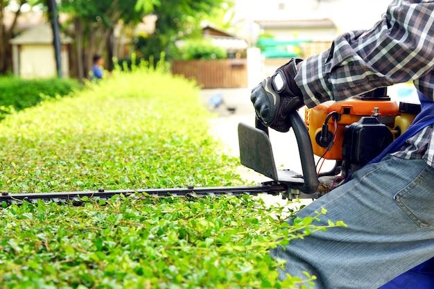 El jardinero está recortando ramas
